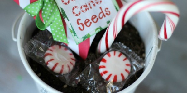 Candy Cane Pillow Boxes