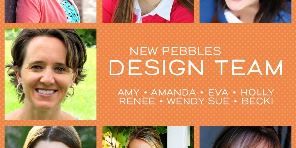 Pebbles Design Team 2015-2016