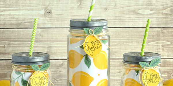 Summertime Lemonade Quick Gift