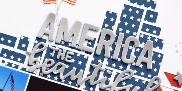 Guest Blogger Marcia joins us for a look at the stars and stripes in Land that I Love!
