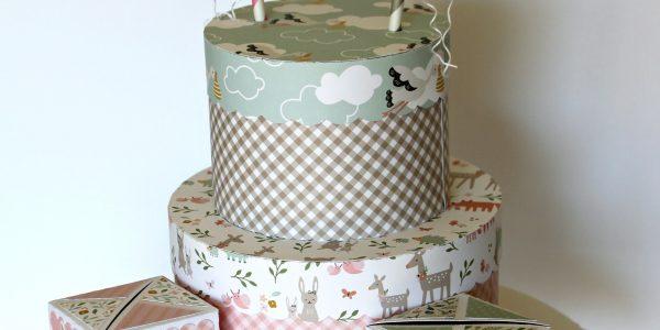 Gender reveal cake and blocks